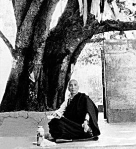 Jamyang Khyentse Chökyi Lodrö seated beneath the Bodhi tree at Bodhgaya